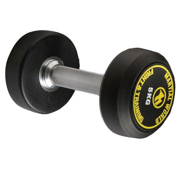 ポリウレタン固定式ダンベル 10kg UD10000