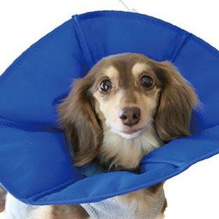 FANTASY WORLD 犬・猫用ラクラクペットカラー Vet's Soft Collar(ベッツソフトカラー) XSサイズ(頭回り:約25.5cm) VS-1