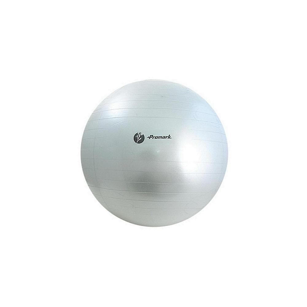 Promark プロマーク 立花龍司監修 バランスボール 約85cm グレー TPT0275