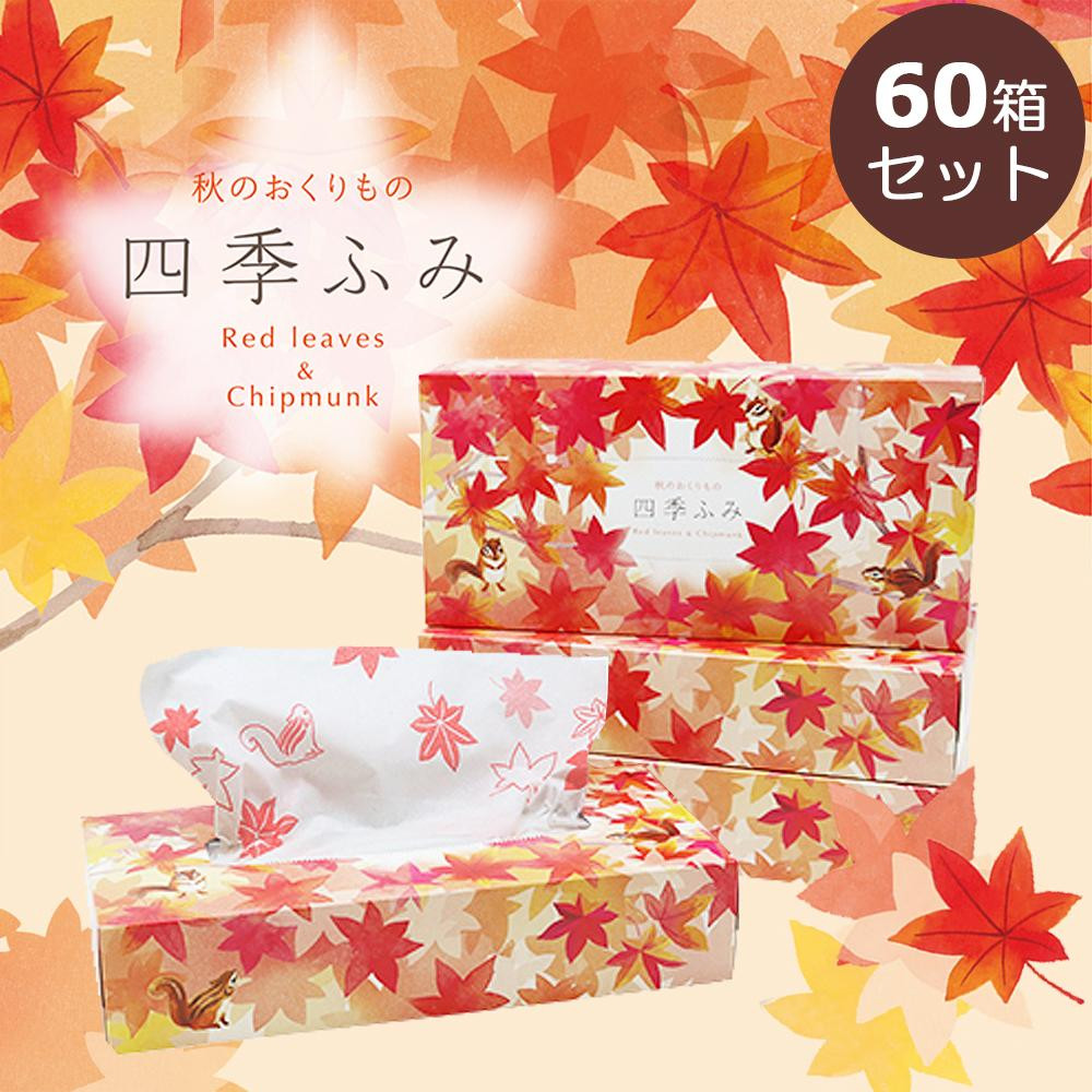 四季ふみ 秋のおくりもの 紅葉 ティッシュ ギフト 240枚(120組)×60箱セット